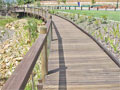 4: Boardwalk & handrail