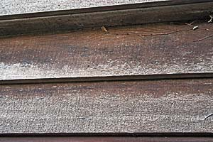 Exposed cladding prior to externior timber treatment